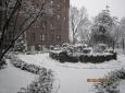 shalom-alechiem-winter-2