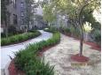 shalom-aleichem-landscaping-4