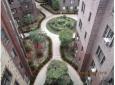 shalom-aleichem-landscaping